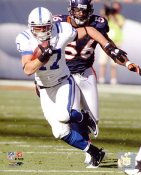 Austin Collie Indianapolis Colts 8X10 Photo