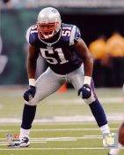 Jerod Mayo New England Patriots 8X10 Photo