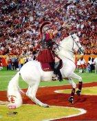 The Traveler USC Trojans Mascot 8x10 Photo