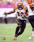 Cedric Benson Cincinnati Bengals 8X10 Photo