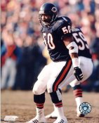 Mike Singletary LIMITED STOCK Chicago Bears 8X10 Photo