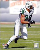 Jason Taylor New York Jets 8X10 Photo