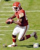 Dwayne Bowe Kansas City Chiefs 8X10 Photo