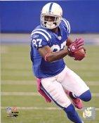 Reggie Wayne Indianapolis Colts 8X10 Photo