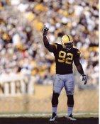 James Harrison Pittsburgh Steelers 8x10 Photo