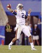 Cam Newton Auburn Tigers 8X10 Photo