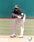 Miguel Tejada LIMITED STOCK Oakland Athletics 8X10 Photo