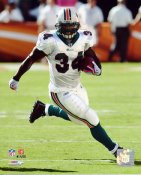 Ricky Williams Miami Dolphins 8X10 Photo
