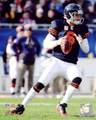 Jay Cutler LIMITED STOCK Chicago Bears 8X10 Photo
