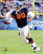 Julius Peppers LIMITED STOCK Chicago Bears 8X10 Photo