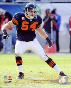 Brian Urlacher LIMITED STOCK Chicago Bears 8X10 Photo