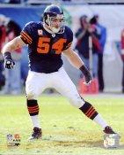 Brian Urlacher LIMITED STOCK Chicago Bears 8X10 Photo