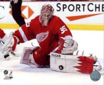 Jimmy Howard LIMITED STOCK Detroit Red Wings 8x10 Photo