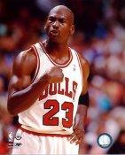 Michael Jordan 1994-95 Chicago Bulls SATIN 8X10 Photo LIMITED STOCK