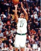 Dana Barros LIMITED STOCK Boston Celtics 8X10 Photo