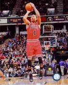 Derrick Rose LIMITED STOCK Chicago Bulls 8X10 Photo