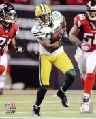 Donald Driver 2010 Playoffs Green Bay Packers 8X10 Photo