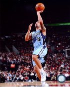Deron Williams LIMITED STOCK Utah Jazz 8X10 Photo