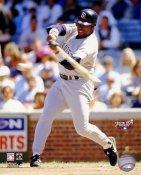 Tony Gwynn Jr San Diego Padres 8x10 Photo