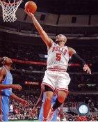 Carlos Boozer Chicago Bulls 8X10 Photo LIMITED STOCK