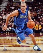 Jason Kidd LIMITED STOCK Dallas Mavericks 8X10 Photo