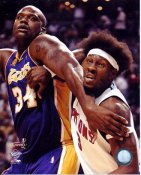 Rasheed Wallace & Shaq O'Neal LIMITED STOCK 8x10 Photo