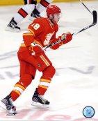 Matt Stajan Calgary Flames 8x10 Photo