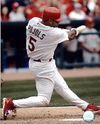 Albert Pujols LIMITED STOCK  Cardinals 8X10 Photo