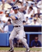 Michael Young Texas Rangers 8X10 Photo
