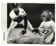 Mike Ramsey LA Dodgers is Tagged Out By Rafael Belliard Pittsburgh Pitates Original Press Photo / Wire Photo 8x10