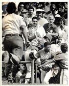 Don Robinson NY Mets On Dugout After a Beverage Was Thrown Original Press Photo / Wire Photo 8x10