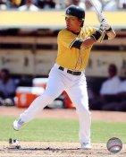 Hideki Matsui Oakland Athletics 8X10 Photo LIMITED STOCK