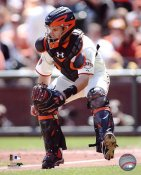 Buster Posey LIMITED STOCK San Francisco Giants 8X10 Photo