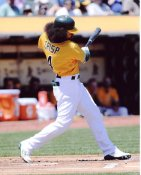 Coco Crisp Oakland Athletics 8x10 Photo