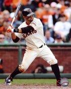 Cody Ross San Francisco Giants 8X10 Photo