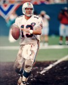 Dan Marino 75 th Anniversary Miami Dolphins LIMITED STOCK 8X10 Photo
