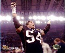 Tedy Bruschi  Super Bowl 38 New England Patriots Slight Corner Crease SUPER SALE 8X10 Photo