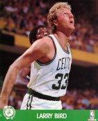 Larry Bird SUPER SALE Boston Celtics 8X10 Photo