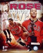 Derrick Rose 2011 MVP Chicago Bulls 8X10 Photo LIMITED STOCK