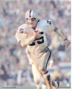 Fred Biletnikoff LIMITED STOCK Oakland Raiders 8X10 Photo