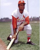 Curt Flood St. Louis Cardinals 8X10 Photo