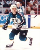 Paul Kariya LIMITED STOCK Ducks 8x10 Photo