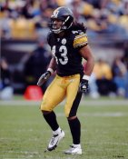 Troy Polamalu LIMITED STOCK Pittsburgh Steelers 8x10 Photo