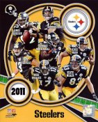 Steelers 2011 Pittsburgh LIMITED STOCK 8x10 Photo