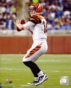 Andy Dalton Cincinnati Bengals 8X10 Photo