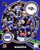 Ravens 2011 Baltimore Team 8x10 Photo