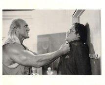 Hulk Hogan LIMITED STOCK 8X10 Photo