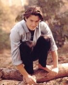 Hugh Grant LIMITED STOCK 8X10 Photo