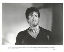 """Sylvester Stallone """"Cobra"""" May Have Slight Creases LIMITED STOCK 8X10 Photo"""