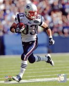 Wes Welker New England Patriots 8X10 Photo